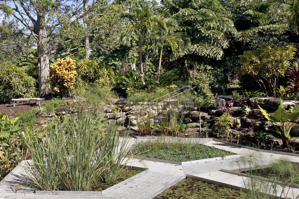 Mounts Botanical Garden Windows Floating World