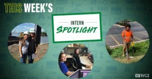 Intern Spotlight