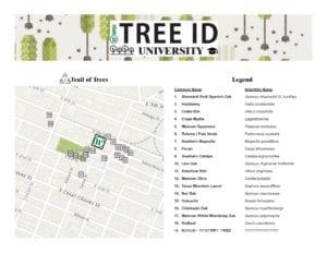 Tree Map Handout