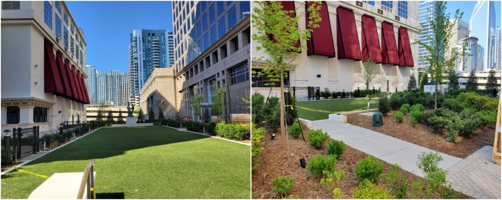 Building plaza landscaping